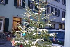 Wunschbaum im Schnee